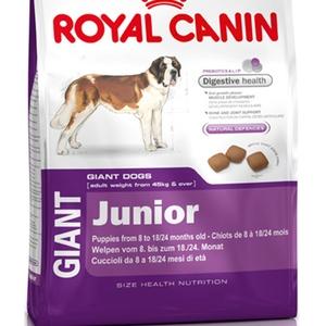 Oferta Royal Canin Giant Junior
