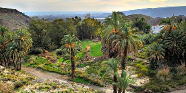 paquete alojamiento parque Oasys Mini Hollywood Almería