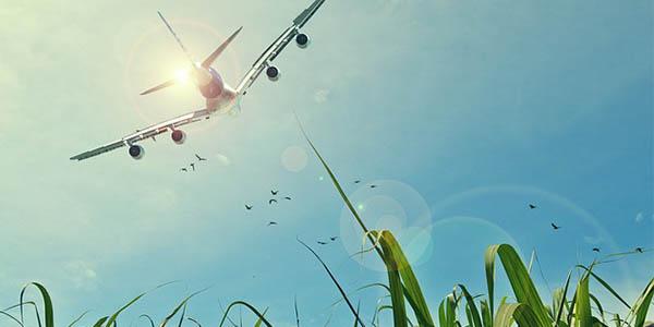 vuelos low cost vacaciones verano 2017