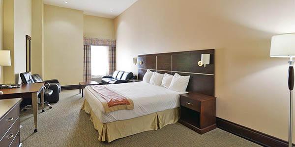 woodbine hotel suites toronto