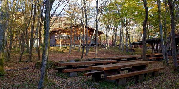 campings con servicios para vacaciones en familia