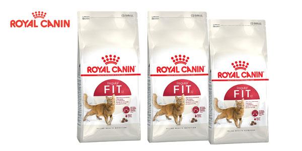 Pienso para gatos Royal Canin Regular Fit32 bolsa 10 kg chollazo en Amazon