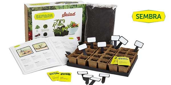 Comprar Kit de cultivo Sembra Salad (tomates cherry, lechugas y rúcula) barato en Amazon