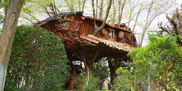 casita en el árbol cabaña en el bosque en Cuenca económica