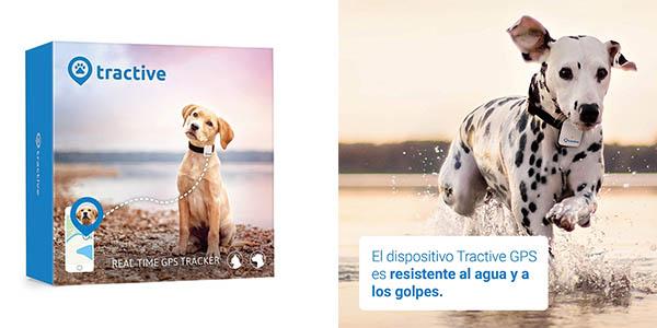 rastreador GPS para mascotas Tractive relación calidad-precio estupenda