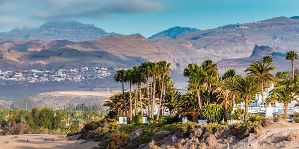 viaje a Canarias verano 2019 relación calidad-precio estupenda