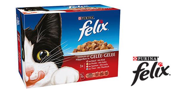 Pack x72 Sobres Purina Felix en gelatina de 100 gr/ud chollo en Amazon