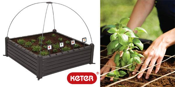 Mini huerto en casa Keter Raised Garden Bed con marcadores barato en Amazon