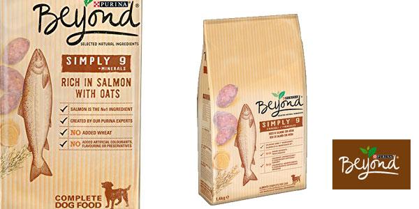 Purina Beyond Pienso para Perro Adulto Salmón y Avena barato en Amazon