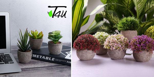 Set Mini plantas artificiales T4U para decoración chollo en Amazon