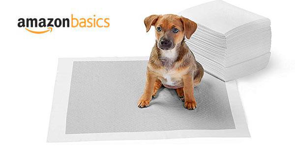 Chollo Empapadores de adiestramiento AmazonBasics para perros