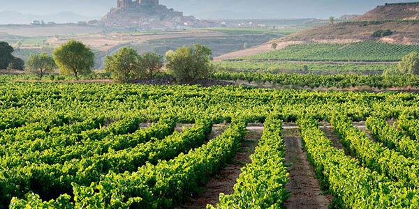 escapada relax a las bodegas de la Rioja oferta alojamiento