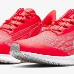 Nike Air Zoom Pegasus 36 FlyEase