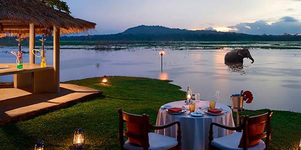 viaje a Sri Lanka con guía oferta hoteles de primera categoría