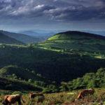 Asturias Escapada barata a Belmonte de Miranda