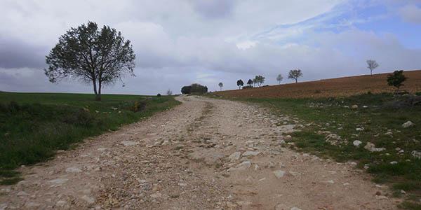 ruta por la Ribera del Duero y Caleruega oferta alojamiento