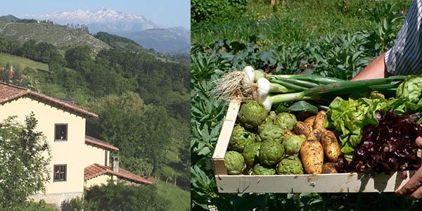 escapada rural a Los Picos de Europa con alojamiento ecológico oferta