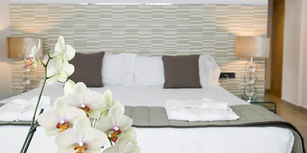 Hotel Spa Niwa oferta alojamiento en Brihuega