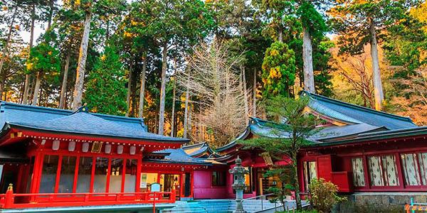 circuito por Japón en hoteles de categoría chollo viaje