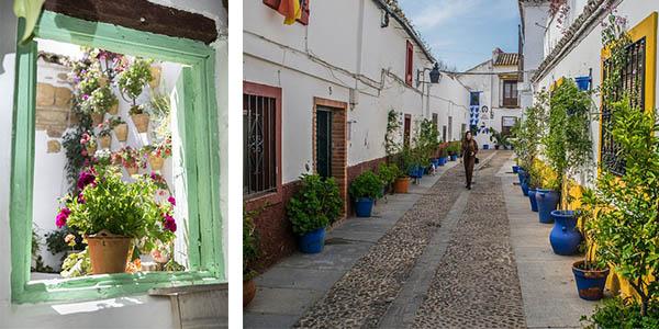 Córdoba escapada barata al Festival de los Patios cordobeses