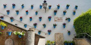 Córdoba festival patios de flores alojamientos baratos
