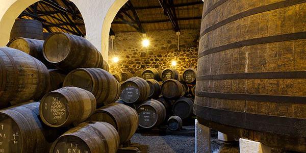 escapada económica a Oporto con visita a Bodega y crucero por el Duero
