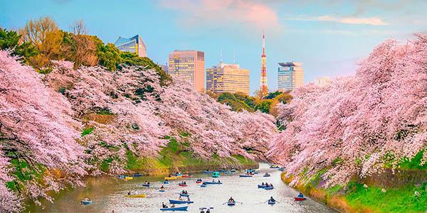 Japón viaje por libre con tour recomendado chollo Voyage Privé