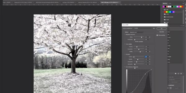 Acceso gratis a curso Photoshop 2020 en Udemy