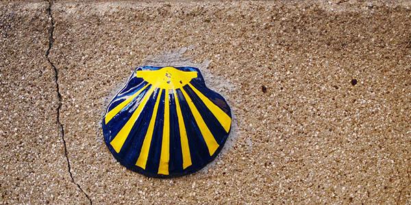 Concha Vieira símbolo de Santiago de Compostela