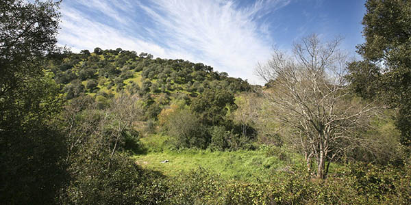escapada rural de senderismo a la Sierra de Hornachuelos Córdoba a precio de chollo