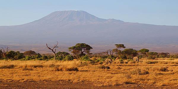 Kilimanjaro escenario de inspiración de El Rey León de Disney