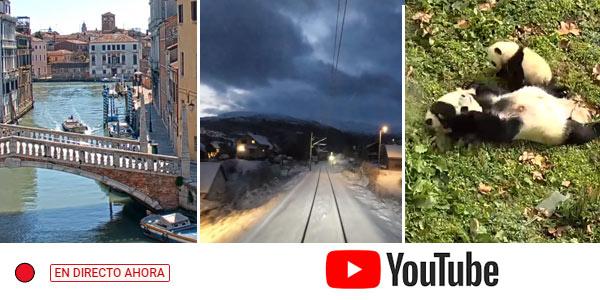 Live Cameras en Youtube