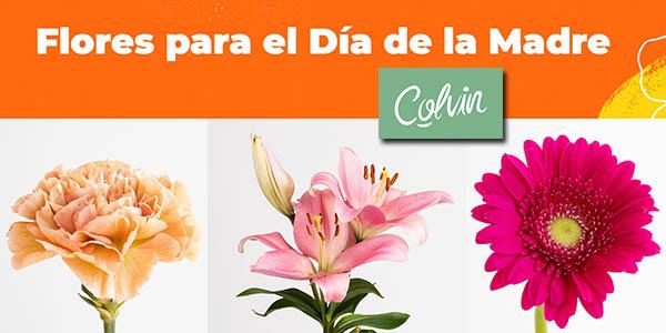 Colvin ramos de flores para el Día de la Madre promoción