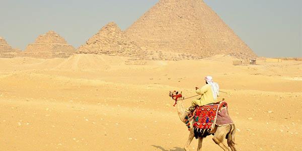 Pirámides Egipto y camellos