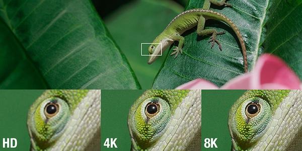Diferencias de detalle entre 8K y 4K