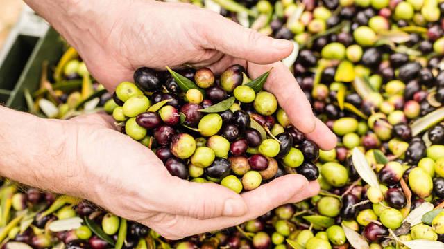 Aceite de orujo de oliva Capicua de 5 litros en oferta