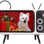 Altavoz Bluetooth Bewinner PTH-800 con forma de TV Retro barato en Amazon