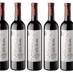 Pack x6 Botellas vino tinto Pata Negra D.O. Ribera del Duero barato en Amazon