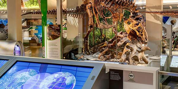 Museo Nacional de Historia Natural del Instituto Smithsoniano visita virtual gratuita