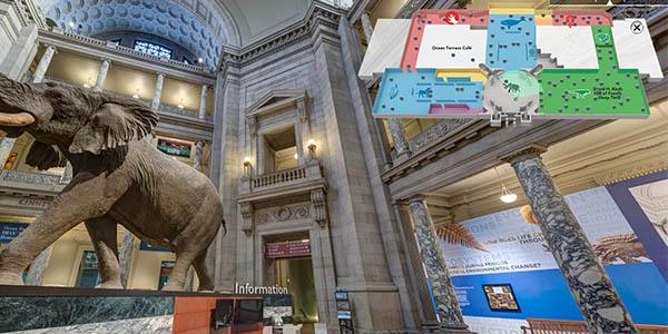 recorrido online por el Museo de Historia Natural Smithsoniano