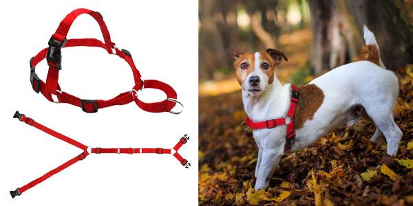 Arnés de nailon sin tirones para perro oferta en AliExpress