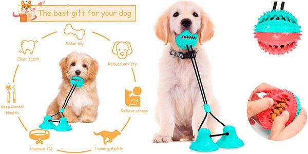 Chollo Juguete multifunción para perros